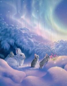 Aurora Bunny Time